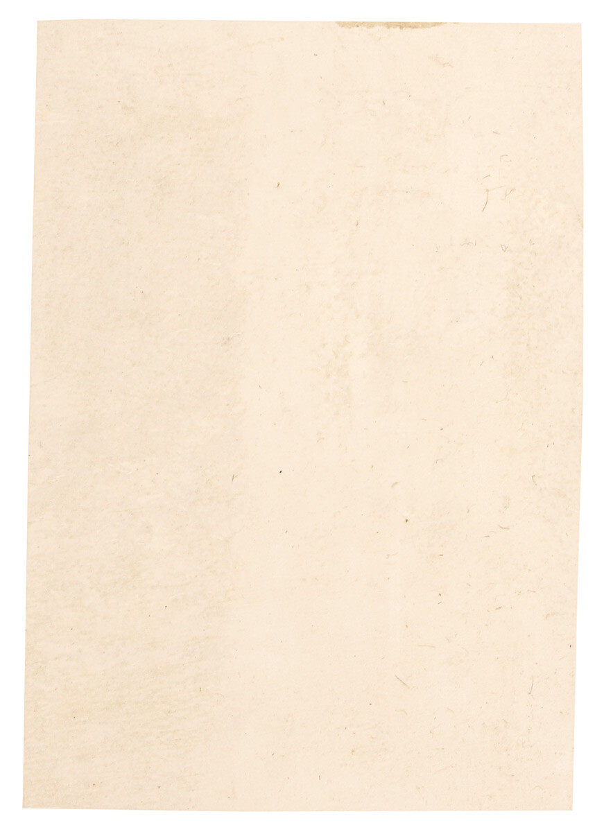 Nude Leather Piece Cow Hide 100% Natural